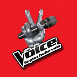 GRAND CASTING THE VOICE & THE VOICE KIDS